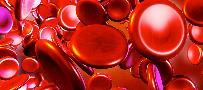 Como a ABHH está sempre preocupada em levar os melhores benefícios a seus associados, ela estabeleceu uma parceria vantajosa com a International  Society of Blood Transfusion (ISBT)